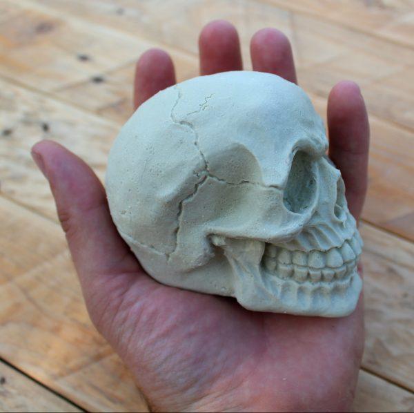 Electrofish Skull Surf Wax
